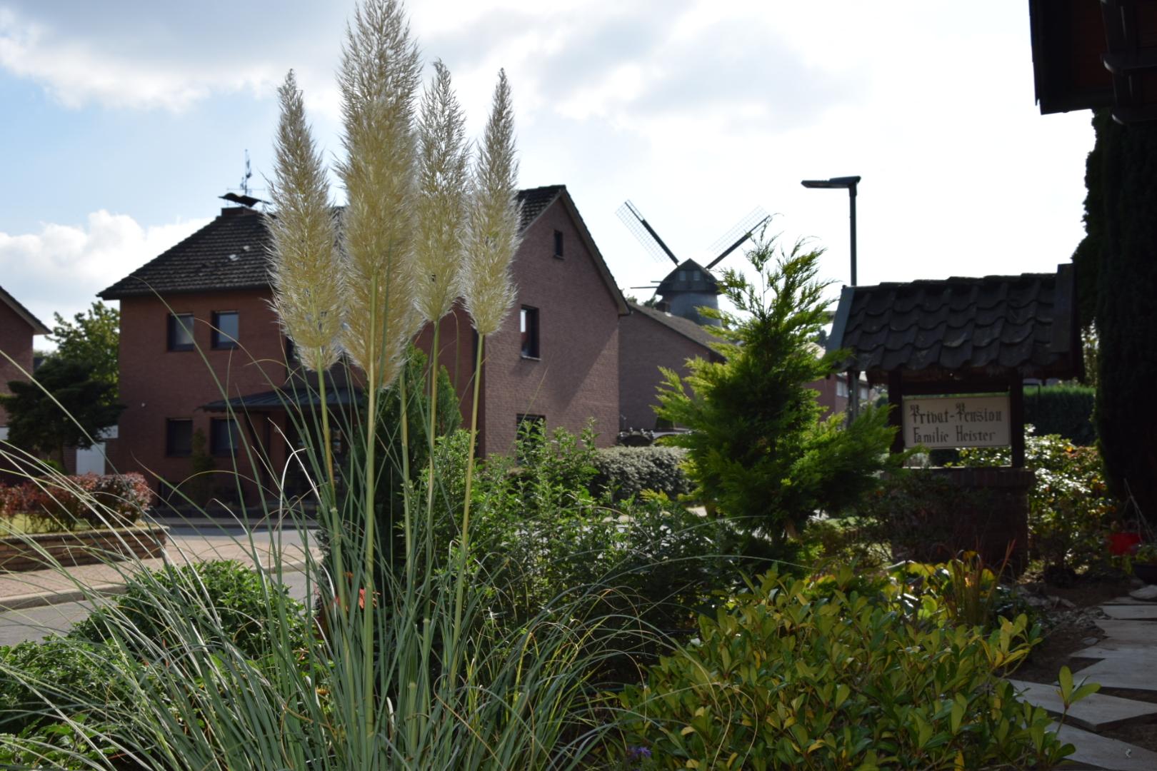 Aussicht Pension Heister in Isselburg - Anholt